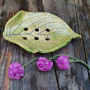Mydelniczka zielona liść hortensji